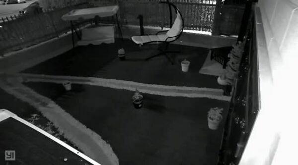 """Le notti foggiane dei rubagalline: """"E' entrato nel mio giardino e ha portato via un trapano e una sega elettrica"""""""